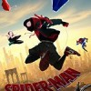 蜘蛛侠:平行宇宙 Spider-Man: Into the Spider-Verse (2018)